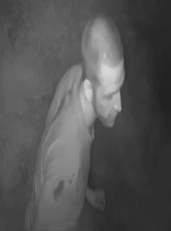 Burglary Suspects Wanted Sweetwater